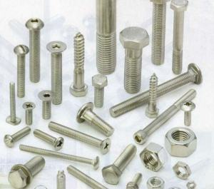 stainless Steel 304 Bolts with nut